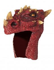 Rode drakenhelm voor volwassenen