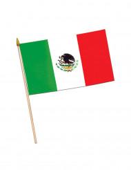 Mexicaanse vlag met stok