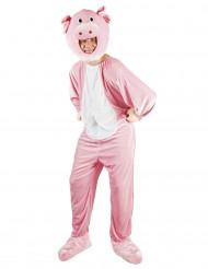 Varken mascotte kostuum voor volwassenen