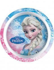 Plastic bord Frozen™