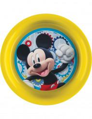 Plastic Mickey™ bord