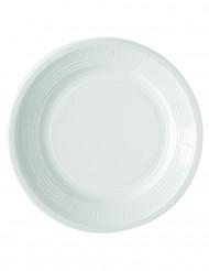 50 witte borden