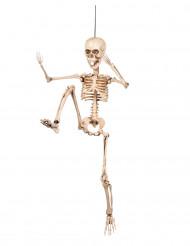 Beweegbare skeletdecoratie