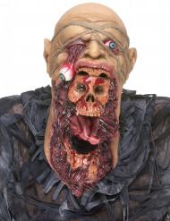 Monsterlijk zombie masker voor volwassenen