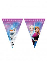 Frozen™ vlaggenlijn 2,3 meter