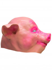 Latex varken masker voor volwassenen