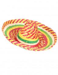 Tutti Frutti Mexicaanse sombrero voor volwassenen