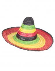 Veelkleurige Mexicaanse sombrero voor volwassenen