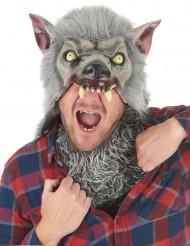 Latex weerwolf masker voor volwassenen