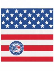 20 kleine papieren USA servetten