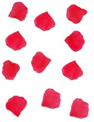 150 rode bloemblaadjes