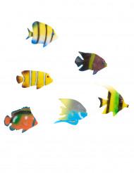 6 tropische vissen decoraties
