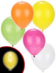 5 LED ballonnen Illooms® summer party