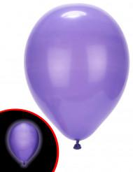 5 Paarse LED ballonnen Illooms®
