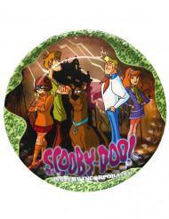 5 kleine Scooby Doo™ bordjes