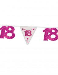 18 jaar verjaardagsslinger