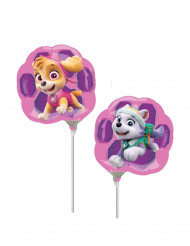 Skye en Everest Paw Patrol™ ballon