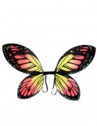Gekleurde vlinder vleugels voor kinderen