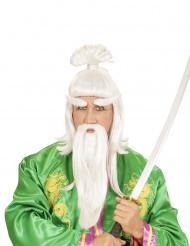 Martial Arts meester pruik voor volwassenen