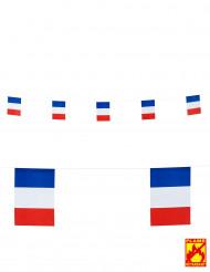 Slinger met Franse vlaggetjes 15 x 20 cm