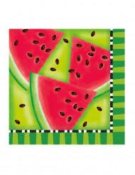 16 papieren watermeloen servetten