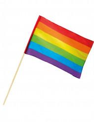 Regenboog vlag 30 x 45 cm
