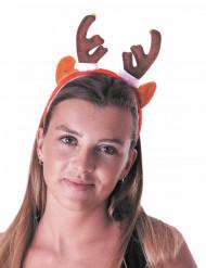 Rendier met belletjes haarband voor volwassenen