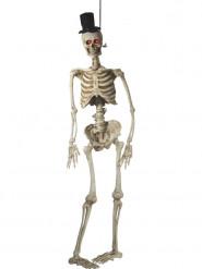 Skelet bruidegom om op te hangen 170 cm