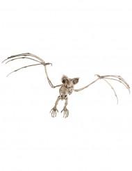 Vleermuis skelet Halloweendecoratie