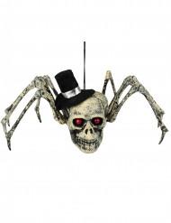 Skelet spin decoratie voor Halloween