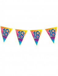 18 jaar vlaggen verjaardagsslinger