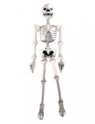 Opblaasbaar skelet Halloween decoratie