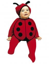 Schattig klein lieveheersbeestje kostuum voor baby