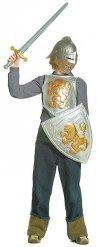 Grijze en goudkleurige ridderset voor kinderen