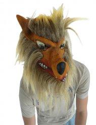 Harige wolf masker voor volwassenen