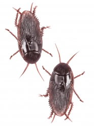 2 neppe plastic kakkerlakken
