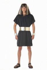 Egyptisch farao kostuum voor volwassenen