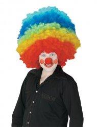 Gigantische veelkleurige clown pruik