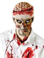 Bloederige hersenen voor volwassenen