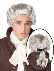 Grijze barok edelman pruik voor mannen