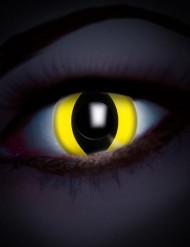 UV gele reptiel lenzen voor volwassenen