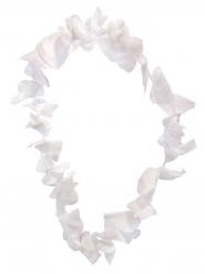 Witte Hawaiiaanse bloemen ketting