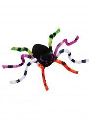 Kleurrijke spin decoratie