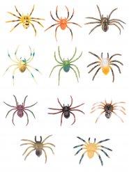 Veelkleurige tarantula decoratie