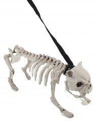 Hond skelet met riem met licht en geluid