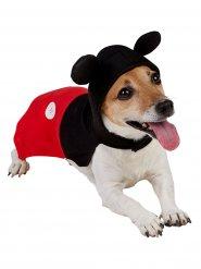Mickey Mouse™ kostuum voor honden