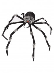 Grote zwarte spin decoratie