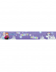3 aluminium Frozen™ banners