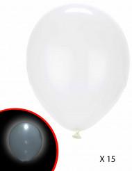 15 witte LED ballonnen Illooms®