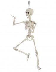 Beweegbaar skelet decoratie